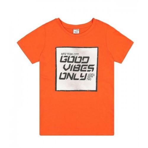 Tricou cu imprimeu baieti, 290410PV21OR